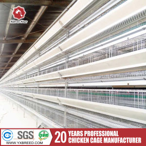 Battery Cages for Meat Chicken pictures & photos