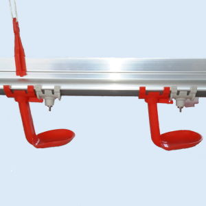 Automatic Poultry Drinker of Poultry Equipment pictures & photos