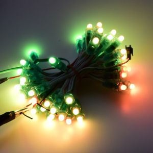 9mm/12mm Seven Color Exposed Luminous Pixel String LED pictures & photos