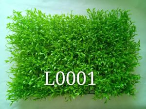Artificial Plants and Flowers of Artificial Grass Gu20170226095727 pictures & photos