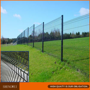 Triangle Coat Border Green Garden Wire Mesh Fence pictures & photos