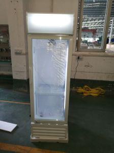 Single Door Vertical Cooler pictures & photos