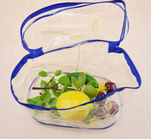 Clear Plastic PP Woman Handbags for Cosmetic Package Design pictures & photos