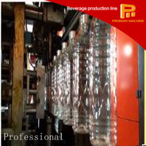 Low Price Fully Automatic 6 Cavity Blowing Machine pictures & photos