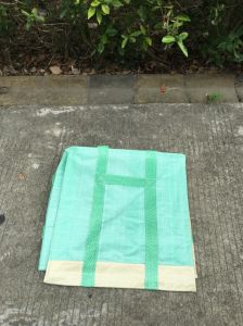 Selfstanding Garden Bag/Heavy Duty Waste Leaf Bag pictures & photos