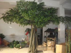 Faux Large Ficus Tree Artificial Banyan Tree pictures & photos