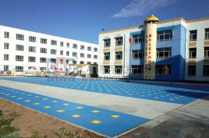 Cag PRO-Environment Kindergarten Special Floor, RoHS/Ce Modular Flooring, Interlocking Flooring, Kindergarten Suraface Floor