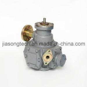 Gas Fuel Pump LPG Piston Flow Meter pictures & photos