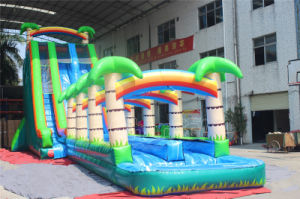 Palm Tree Shore Inflatable Water Slide for Obstacle Game (CHSL583-1) pictures & photos