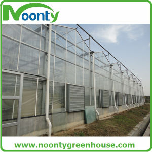 Aluminum Frame Tunnel Glass Greenhouse Single Span with Automatic Ventilation pictures & photos
