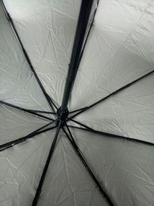 Black Automatic Rain Umbrella with Silver Brim pictures & photos