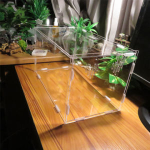 Acrylic Pet Reptile Cage Feeding Breeding Box pictures & photos