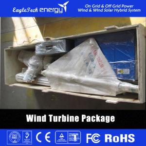 600W Wind Turbine Wind Power Generator L Wind Power System pictures & photos