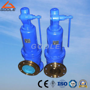 Lesser Safety Valve (GA900) pictures & photos
