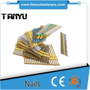 Roof Decking and Exterior Decks Plastic Collated Nails pictures & photos