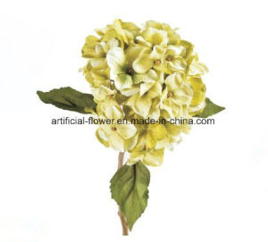 Cheap Artificial Flower Real Touch Silk White Hydrangea, Artificial Silk Blue Hydrangea pictures & photos