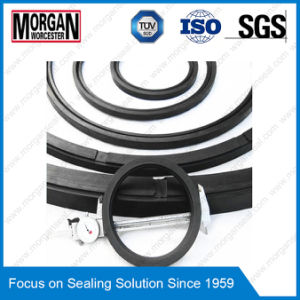 PTFE/NBR/FKM/ Pmq Customized Large Size Rubber Seal pictures & photos