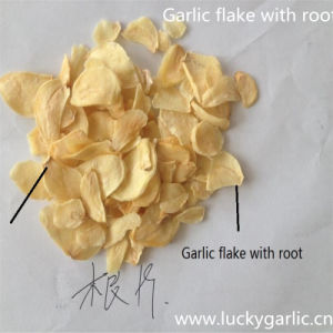 Dehydrated Garlic Granules with Roots 20-40m pictures & photos