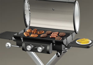 Luggage Style Foldable Portable Gas BBQ Grill pictures & photos