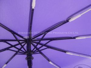 10 Ribs Auto Open&Close Umbrella with Strengthened Design pictures & photos