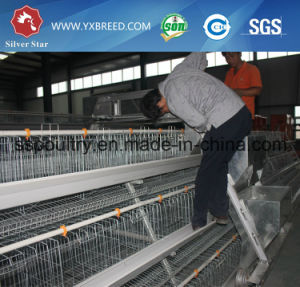 H Type Best Price Poultry Farm Egg Layer Chicken Cage pictures & photos