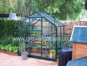 Hobby Greenhouse for Plants and Flowers (B705) pictures & photos