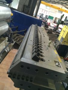 PE Geomembrance/Geocell Extrusion Line pictures & photos