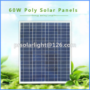 60W Poly Renewable Energy Saving Sunpower Pet Solar Panel pictures & photos