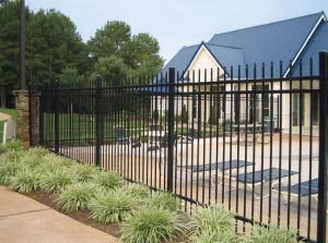 Black Powder Coated Full Weld Wrought Iron Garden Fence pictures & photos