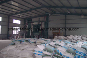Choose Polifar Choose Top Quality Dicalcium Phosphate Feed Additive pictures & photos