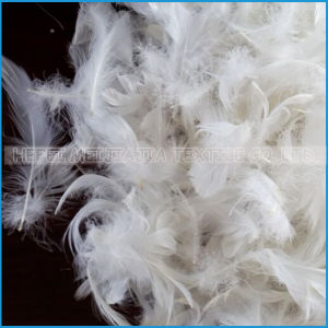 White or Grey Duck Feather for Textile pictures & photos