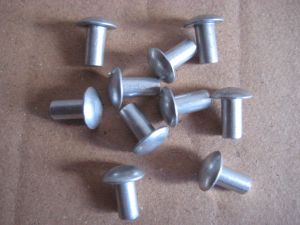 Solid Aluminium Rivets Brazier Head Pot Pin pictures & photos