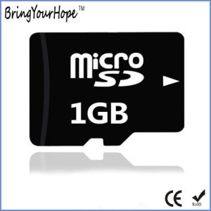Real 1GB High Speed Micro SD Memory Card (1GB TF) pictures & photos