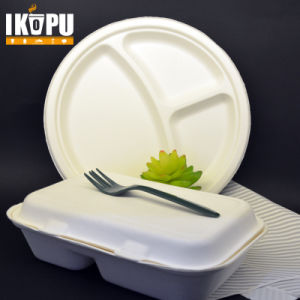 100% Biodegradable Pulp Lunch Box Takeaway Food Container pictures & photos
