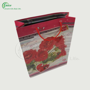 Flower Design Paper Bag for Gift Shopping (KG-PB022)
