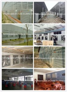 Agriculture Poultry Farming Equipment Ventilation Fan Exhaust Fan pictures & photos