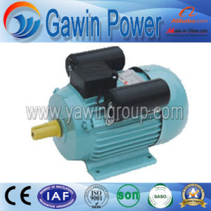 High Quality Yl Series Single-Phase Dual-Capacitor Induction Motor pictures & photos