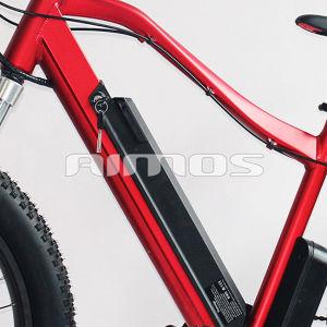 7 Speeds Beach Cruiser 48V 750W Fat Tire Electric Bike pictures & photos