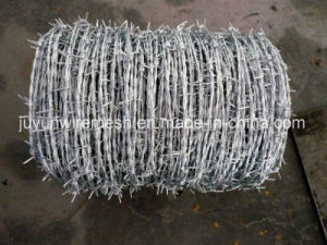 Barbed Wire Bwg12*Bwg14 Hot Sale with Certification pictures & photos