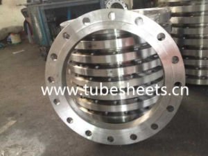 Carbon Steel Forged Plate Flange pictures & photos