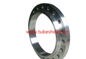 Atsm Carbon Steel / Alloy Steel Heat Exchanger Tube Sheet Flange for Electric Power pictures & photos