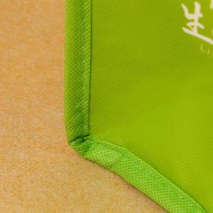 Non Woven Lamination Printed Reusable Ice Cooler Picnic Bag pictures & photos