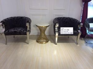 Silver Stainless Steel Legs Leisure Chair Whith Handle pictures & photos