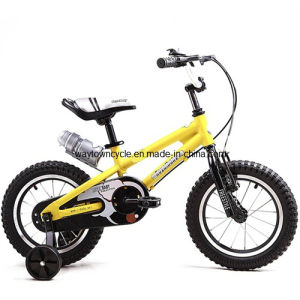 Children Biycle/BMX Bike/Kids Bicycle/Alloy Children Bicycle/Bicycle (WT-1634) pictures & photos