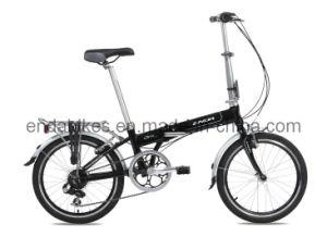Folding Bicycle/Bike (KA072)