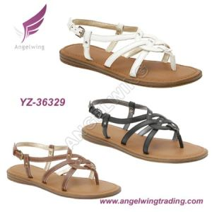 Lady Fashion Sandals (YZ-36329)