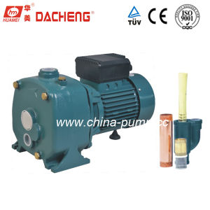 DCP Series Water Pump pictures & photos