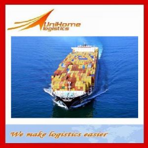 Competitive Sea Freight/Shipping Service