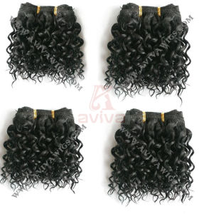 Afro Jerry Curl Human Hair Weft (AV-HE019) pictures & photos