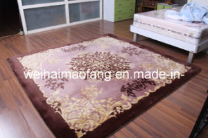 Luxury Shaggy Raschel Mink Carpet (NMQ-CPT019) pictures & photos